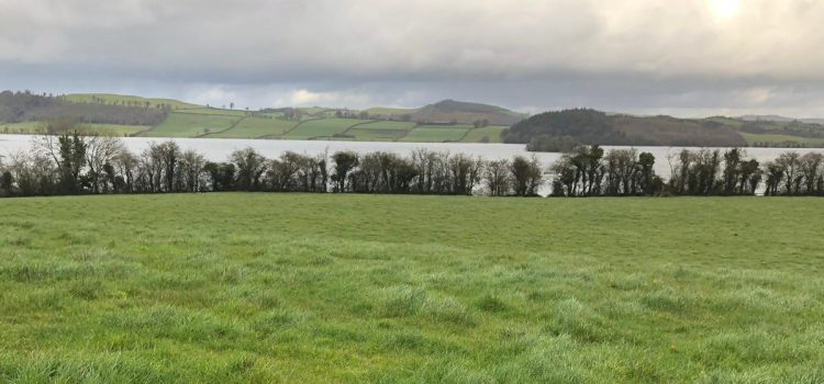 Westmeath Field Names Project