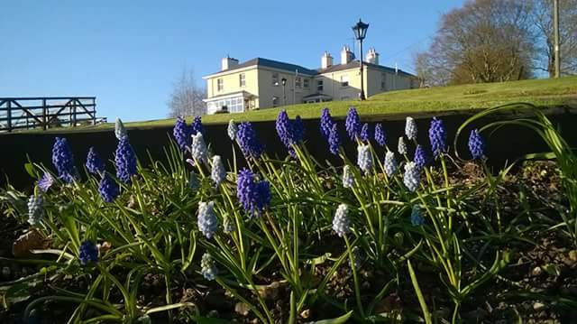 Hounslow House B&B Fore | Visit North Westmeath